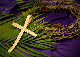 Palm cross